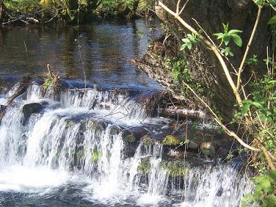 Recuerdos y sensaciones a la orilla del río II