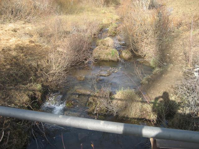 Finde del secuestro, río Codijal