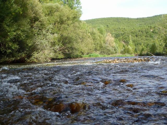 Porma, un río para otear.