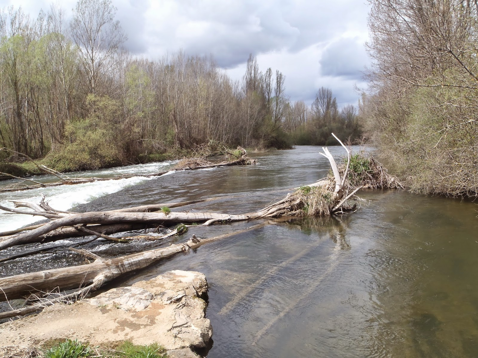 Río Porma, pescar con 20,20m3/s