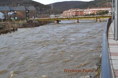 Inundaciones y Frezas