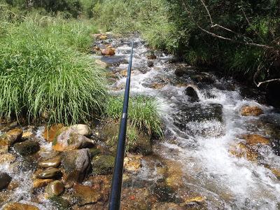 Río Casares, Sentenciado.