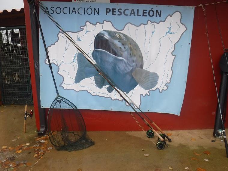 Jornada de convivencia, Asociación Pescaleón.