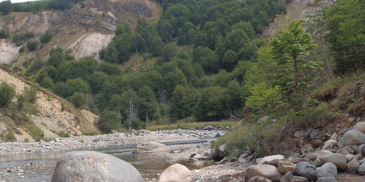 Patagoneando