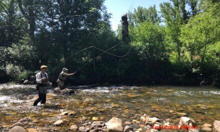 Pescar a la mano